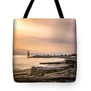 Mouth Of The Fraser Tote Bag