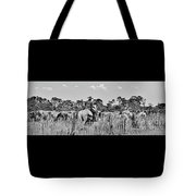 Moving Cattle Tote Bag