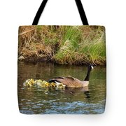 Moving The Brood Tote Bag