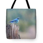 Mr. Bluebird Tote Bag