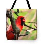 Mr Cardinal Tote Bag