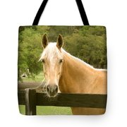 Mr. Ed Tote Bag