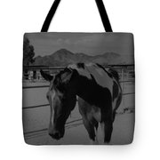 Mr Ed In Black And White Tote Bag