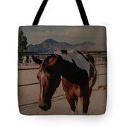 Mr Ed Tote Bag