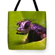 Mr. Fly Tote Bag