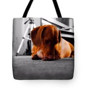 Mr Fritz Biting Tote Bag