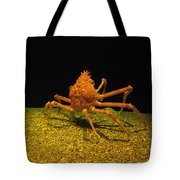 Mr. Krabbs Tote Bag