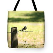 Mr. Mockingbird Tote Bag