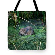 Mr. Muscrat Tote Bag