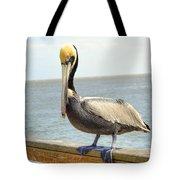 Mr. Pelican Tote Bag