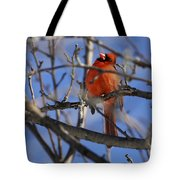 Mr. Red Beauty Tote Bag