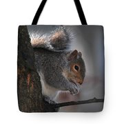 Mr S Snacking Tote Bag