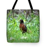 Mr. Spring Tote Bag