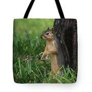 Mr. Squirrel Tote Bag