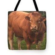 Mr Whopper Tote Bag