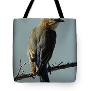 Mrs. Bluebird Tote Bag