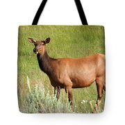 Ms. Elk Tote Bag