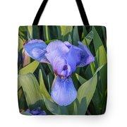 Msu Spring 10 Tote Bag
