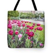 Msu Spring 19 Tote Bag