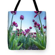 Msu Spring 20 Tote Bag