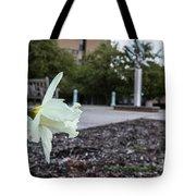 Msu Spring 22 Tote Bag