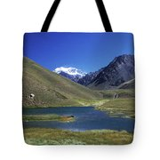 Mt Aconcagua And Laguna Horcones Tote Bag
