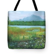 Mt Ampersand From Oseetah Lake Tote Bag