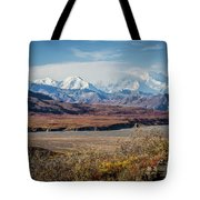 Mt Denali View From Eielson Visitor Center Tote Bag