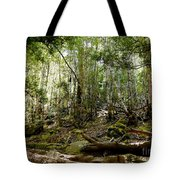 Mt Field Forest Tote Bag