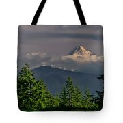 Mt Hood From Grassy Knoll Tote Bag