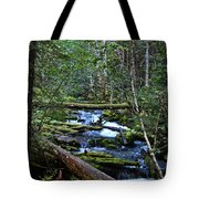 Mt Hood Wilds Tote Bag