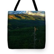 Mt Hood With Snag Tote Bag