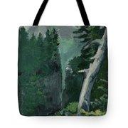 Mt Ranier Tote Bag