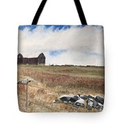 Mt Savior Barn Tote Bag