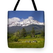Mt Shasta With Picnic Tables Tote Bag