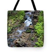 Mt. Spokane Creek 2 Tote Bag