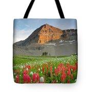 Mt Timpanogos Tote Bag