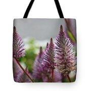 Mt. Washington Flowers Tote Bag