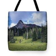 Mt. Washington Tote Bag