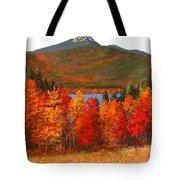 Mt.chocorua Tote Bag by Jack Skinner
