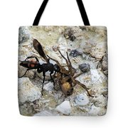 Mud Dauber Wasp And Prey Tote Bag