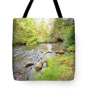 Mud Run, Pennsylvania, Pocono Mountain Stream Tote Bag