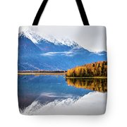 Mudd Lake Reflections Tote Bag