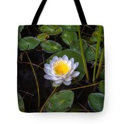 Mudd Pond Water Lily Tote Bag