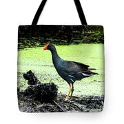 Muddy Marsh Tote Bag