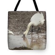 Muddy Tundra Swan Tote Bag