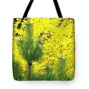 Mugo Pine And Forsythia Tote Bag