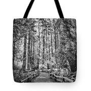 Muir Woods Bw Tote Bag