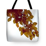 Mulberry Autumn Tote Bag