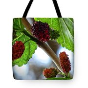 Mulberry Season Tote Bag